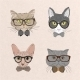Collection of Hipster Cats - GraphicRiver Item for Sale