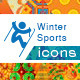 Sochi 2014 Winter Sports Icon Set - GraphicRiver Item for Sale