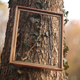 Autumn Photo Frames - VideoHive Item for Sale