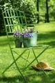 Green garden chair - PhotoDune Item for Sale