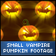 Halloween Vampire Face Small Pumpkins - VideoHive Item for Sale