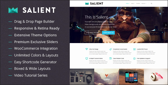 Salient - Best WordPress Themes for Photographers