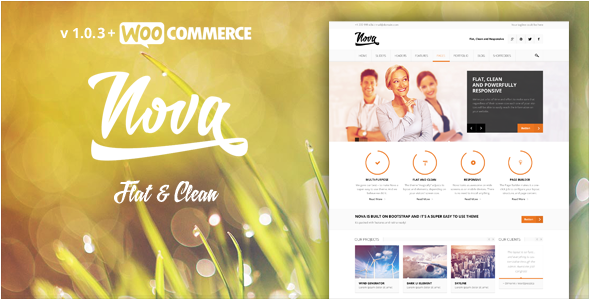 Theme de WordPress Estilo Flat: Nova