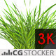 Wind Simulated Grass - VideoHive Item for Sale