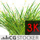 Wind Simulated Grass with Flowers - VideoHive Item for Sale