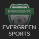 Evergreen Sports - WP Theme for Sports Clubs - ThemeForest Item for Sale