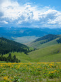 Mountain and Valley View from the National Bison Refuge in Montana USA - PhotoDune Item for Sale