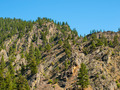 Evergreen Trees on a Steep, Rocky Mountainside in Montana USA - PhotoDune Item for Sale