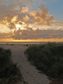Sunset Over the Ocean with a Beach Path Foreground - PhotoDune Item for Sale