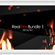 Real Fire Bundle 1  - VideoHive Item for Sale