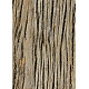 Tileable Fissured Wood Texture - GraphicRiver Item for Sale