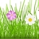 Grass with Flowers - GraphicRiver Item for Sale