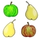 Vector Fruit - GraphicRiver Item for Sale