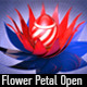 Flower Petal Open - VideoHive Item for Sale