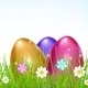 Three Multicolored Eggs in Grass with Flowers - GraphicRiver Item for Sale
