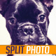 Split Photo Slide - VideoHive Item for Sale