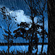 Night Forest 3 - VideoHive Item for Sale