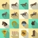 Horseback Riding Flat Shadows Icons Set - GraphicRiver Item for Sale