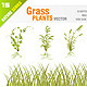 Grass Plant Set - GraphicRiver Item for Sale