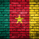 Brick wall with painted flag of Cameroon - PhotoDune Item for Sale