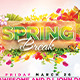 The Spring Break Flyer Template  - GraphicRiver Item for Sale