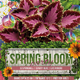 Spring Bloom Flyer Template - GraphicRiver Item for Sale