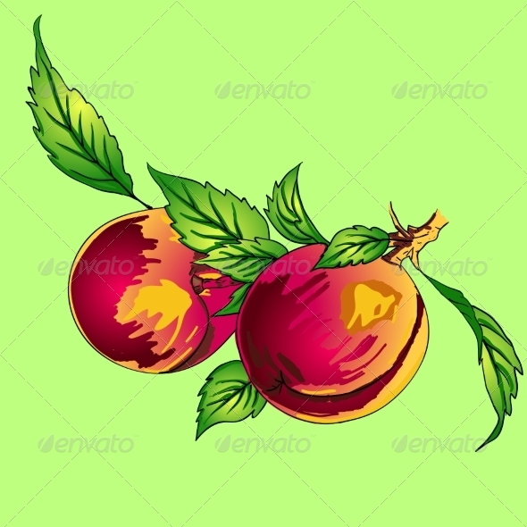 GraphicRiver Peaches 7201455