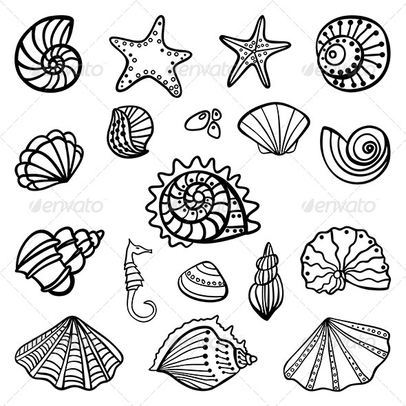 GraphicRiver Set of Seashells on White Background 7201604