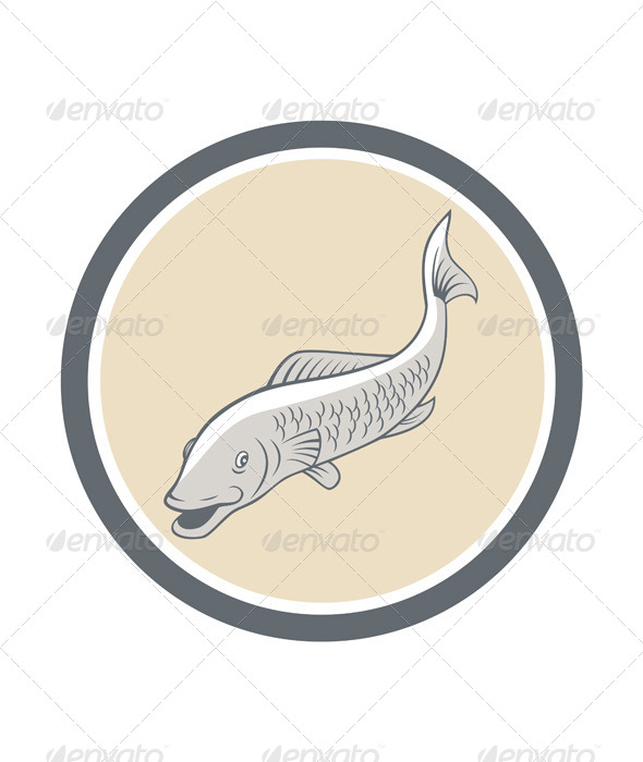 GraphicRiver Trout Swimming Cartoon Circle 7201664