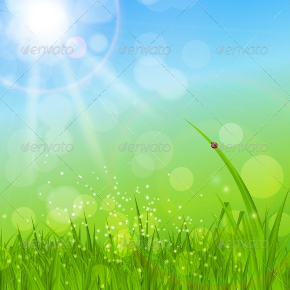 GraphicRiver Summer Abstract Background with Grass 7207517