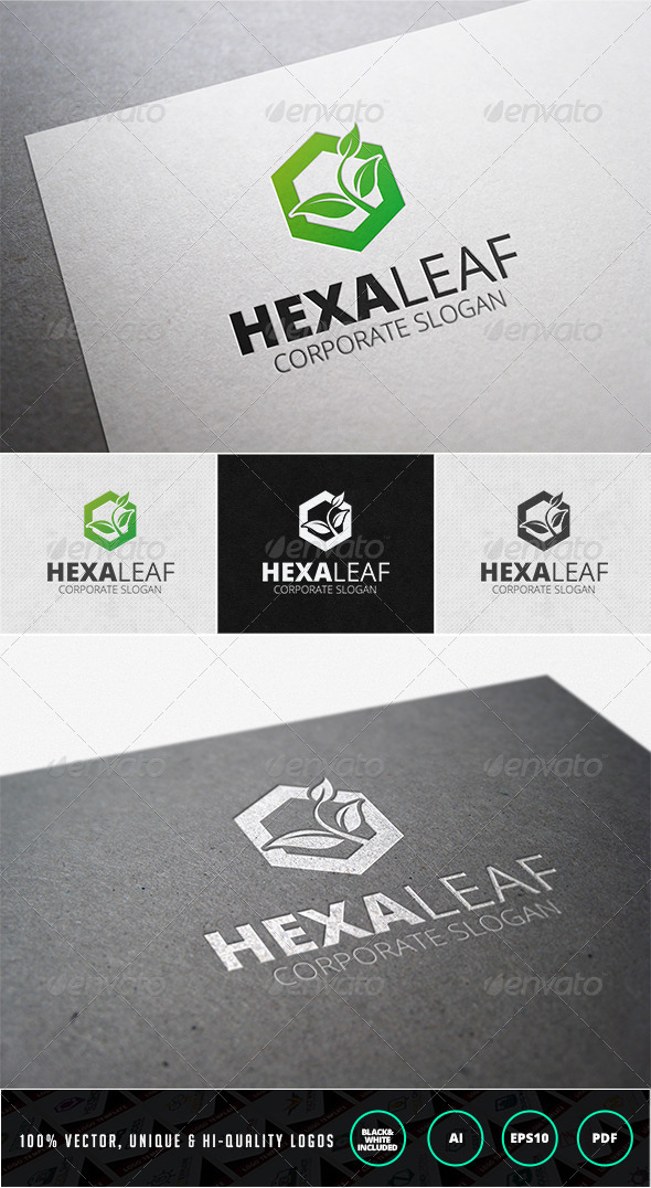 GraphicRiver Hexa Leaf Logo Template 7208422