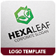 Hexa Leaf Logo Template - GraphicRiver Item for Sale
