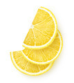 Slices of lemon - PhotoDune Item for Sale