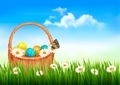 Easter background. Easter eggs and flowers in a basket in the grass - PhotoDune Item for Sale