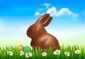 Chocolate bunny with easter eggs in grass. - PhotoDune Item for Sale