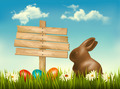Chocolate bunny with easter eggs and a sign in a field. - PhotoDune Item for Sale