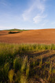 Farm Industry Plowed Field Spring Planting Palouse Country Ranch - PhotoDune Item for Sale