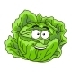 Cabbage Cartoon  - GraphicRiver Item for Sale