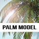 Palm Tree Model - 3DOcean Item for Sale
