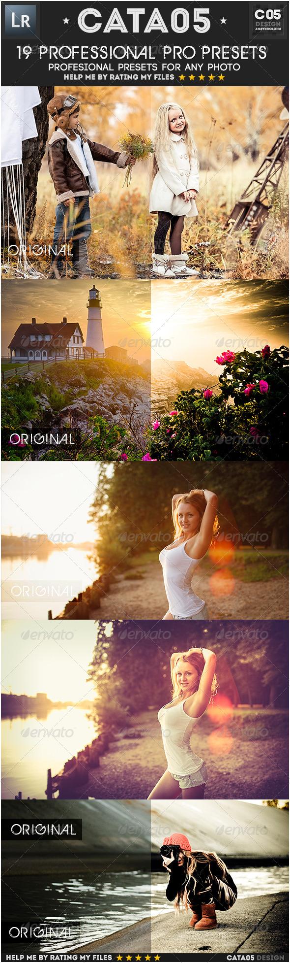 GraphicRiver 19 Professional Pro Presets 7225294