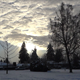 Winter Village - 36 - Twilight Trees, Houses, Cars - VideoHive Item for Sale