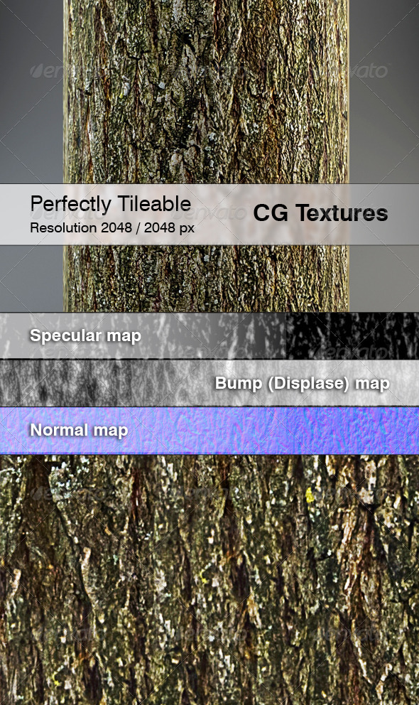 3DOcean Realistic Willow Bark Textures 7228341