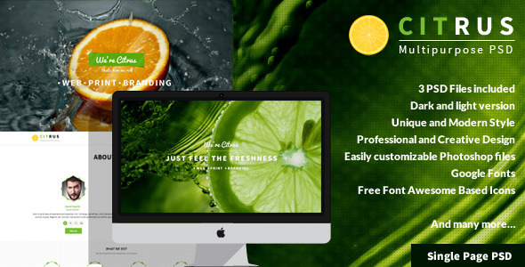 ThemeForest Citrus One Page PSD Template 7219144