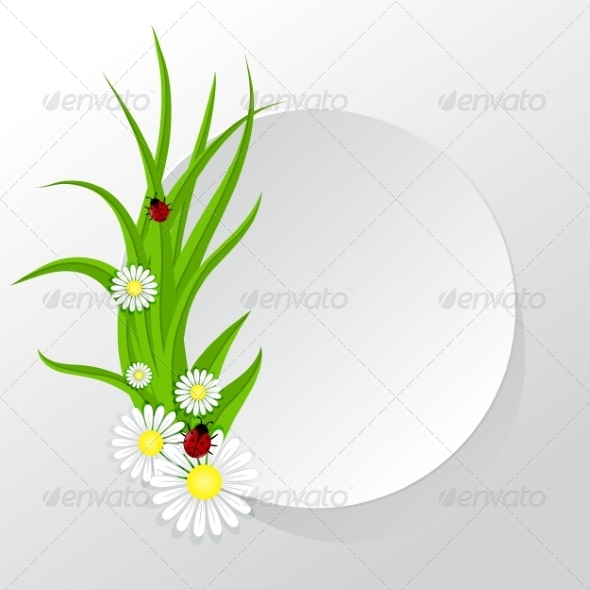 GraphicRiver Circle Frame with Grass and Chamomiles 7245194