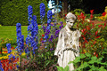 Blue delphinium garden - PhotoDune Item for Sale