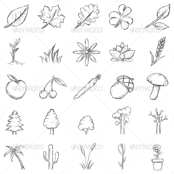 GraphicRiver Vector Set of Sketch Plants Icons 7252435