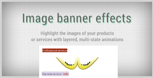CodeCanyon Image Banner Effects 7244842