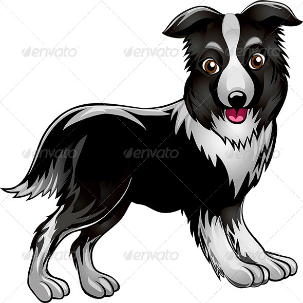 GraphicRiver Collie 7262494