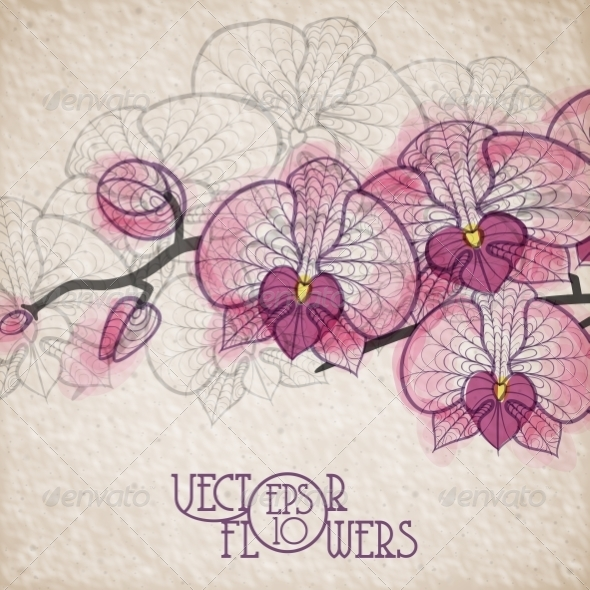 GraphicRiver Hand Drawing Orchid Flower 7263087