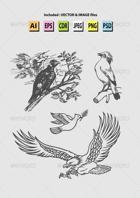 GraphicRiver Bird Sketches Vector 7263220
